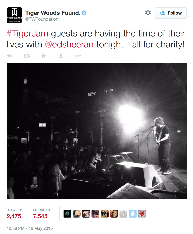tiger-jam-golf-simulator-ed-sheeran