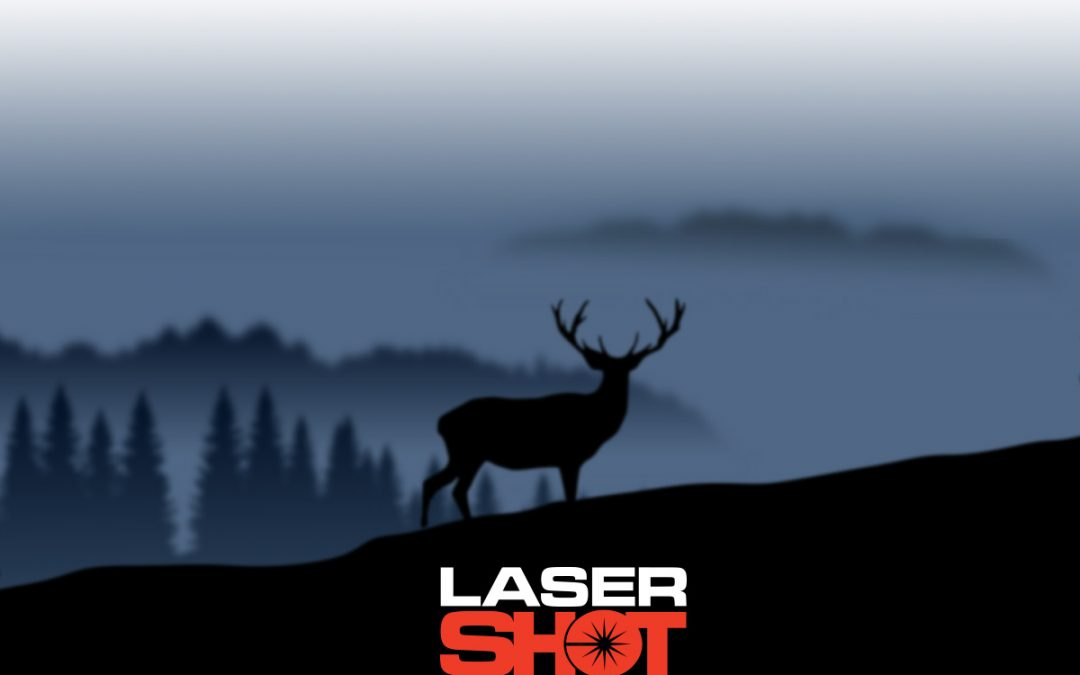 Laser Shot Demo